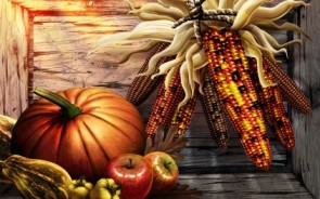 harvest-thanksgiving_422_16557