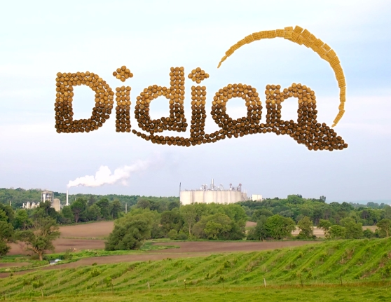 Didion Cereal Landscape